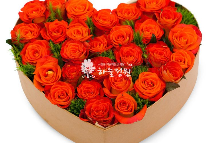 강남역 꽃배달 하늘정원 02-6677-5050